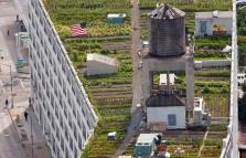 XXI Triennale: City after the city, cinque mostre