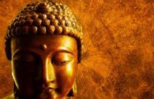 Le radici della felicità. Ritiro di Bioenergetica e mindfulness