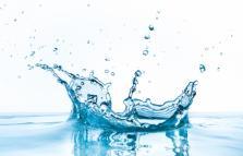 WaterWord, Conversazioni sull'acqua