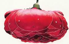 La zecca e la rosa, presentazione del libro di Maurizio Maggiani