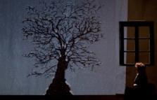 L'albero di Anna