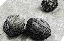 Il prezzo delle noci, mostra personale di Giuseppe Buffoli