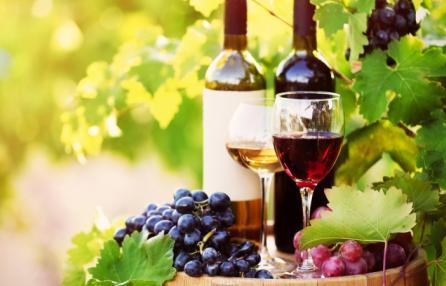 Festa dell'uva, degustazioni di vino bianco e rosso