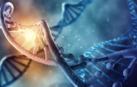 Il Progetto Genoma Umano, incontro