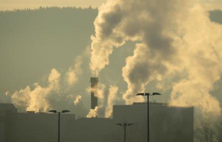L'aria inquinata danneggia anche il nostro cervello?, convegno