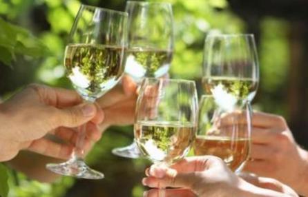 In Vino Veritas - La Festa del Vino